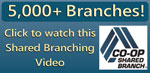 Shared Branching Video